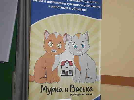 В Год собаки поговорим о кошках