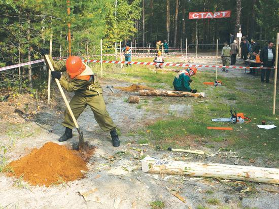 Мужественные защитники леса